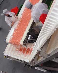 пласиковая модульная ленты рис №9